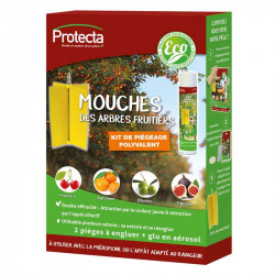 Kit mouch'clac fruitier...
