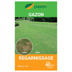 GAZON REGARNISSAGE 1KG
